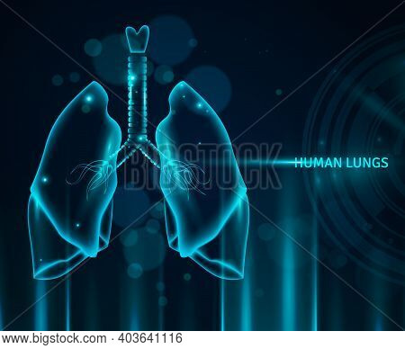 Transparent Human Lungs In Blue Color Background With Light Effects And Bokeh Flat Vector Illustrati