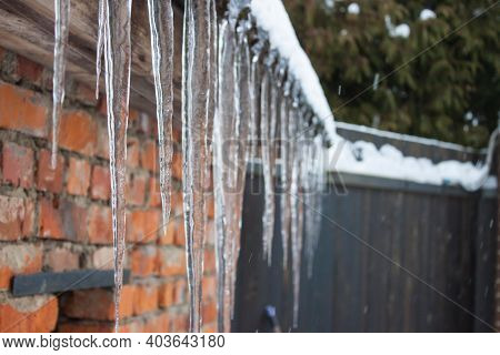 Sharp Icicles And Melted Snow Hanging From Eaves Of Roof. Beautiful Transparent Icicles Slowly Glidi