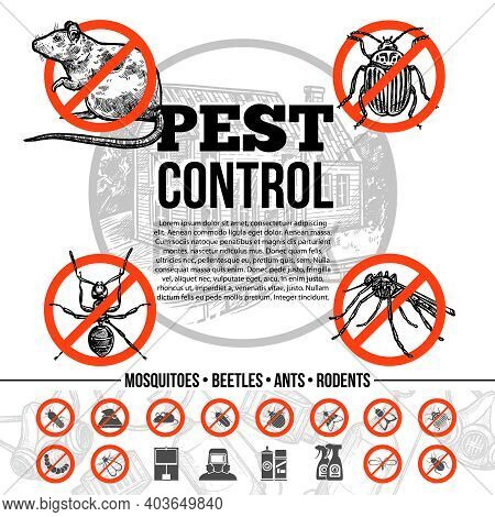 Pest Control Infographics With Icons Of Insects Rat And Means Of Protection In Sketch Style Isolated