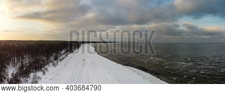 Snow-covered Pine Forest By The Sea At The Golden Hour At Sunset. Winter Landscape.
