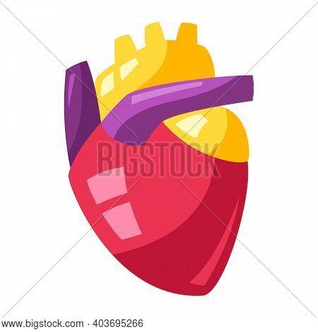 Illustration Of Human Heart. Stylized Conceptual Image.