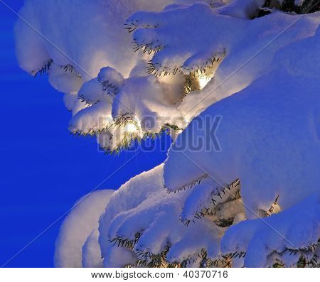 Snow aglow from Christmas lights on tree