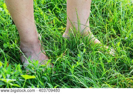 Bare Feet Of A Man On The Green Grass, Walking On The Dewy Grass To Harden