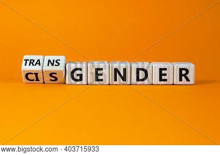 Transgender Or Cisgender Symbol. Turned Wooden Cubes And Changed Word 'cisgender' To 'transgender'.