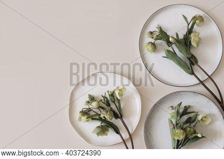 Spring Foral Frame, Banner. Green Hellebores Flowers On Round Ceramic Plates. Neutral Beige Champagn