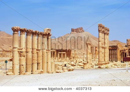 ancient Palmyra Syria culture desert destroyed place poster