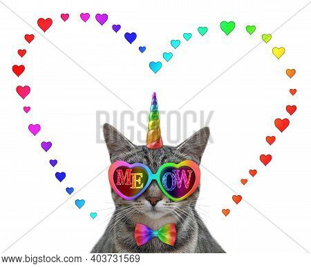 A Gray Cat Unicorn Wears Color Heart Shaped Sunglasses With The Inscription