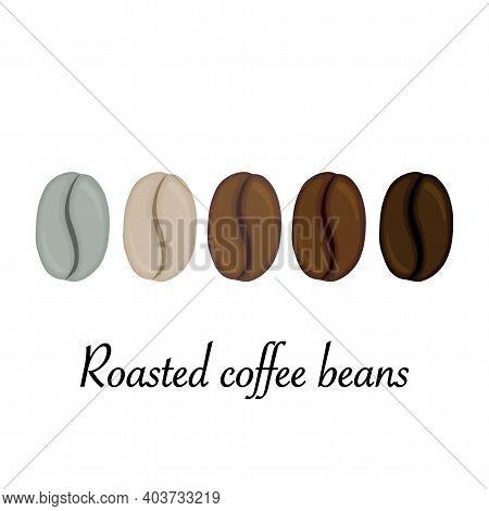 Roasted Coffee Beans. Cartoon Style. Vector Illustration.