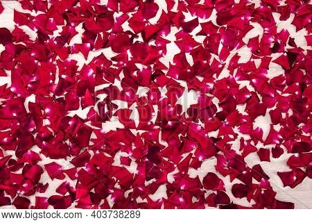 Abstract Background From Scattered Red Rose Petals On A White Wooden Table. Red Rose Petals On A Whi
