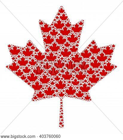Vector Maple Leaf Collage Is Composed From Repeating Fractal Maple Leaf Icons. Fractal Collage From