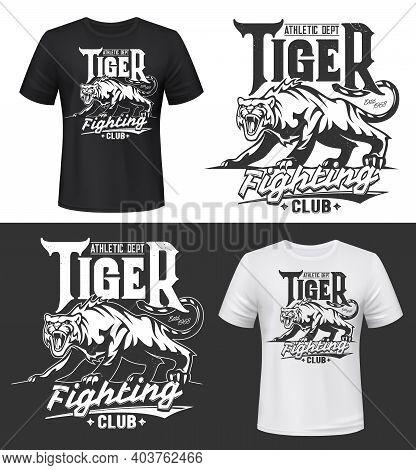 Tshirt Print With Tiger, Roaring Wild Animal, Fighting Club Vector Mascot. Sport Team Symbol. Grinni