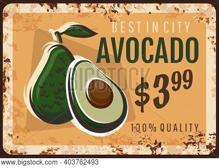 Avocado Metal Plate Rusty, Fruits And Vegetables Food Farm Market Price Sign, Vector Retro Poster. A