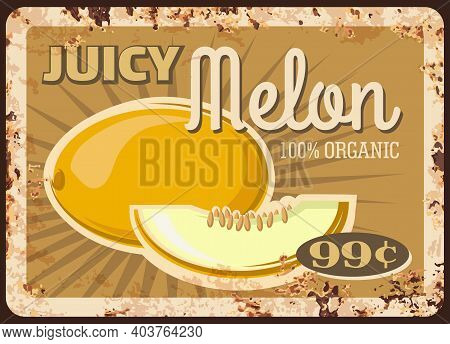 Melon Fruit Metal Plate Rusty, Food Market Price Or Retro Poster, Vector. Farm Store Melon Fruits, A