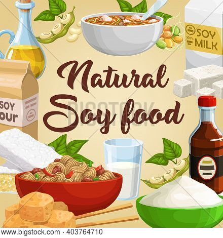 Soy Food, Soybean Products, Soya Tofu And Milk, Vector Poster. Soy Bean Tempeh Skin And Oil, Soy Mea