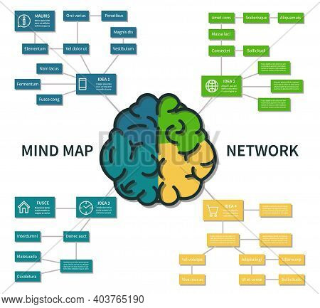 Mind Map Infographic. Abstract Brain Thinking Process Scheme, Business Steps Planning Vector Concept