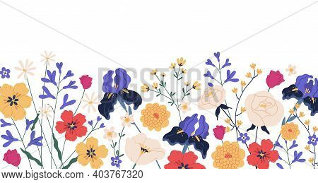 Border Of Gorgeous Spring Blooming Flowers. Backdrop With Iirises, Camomiles, Roses, Anemones And Ch