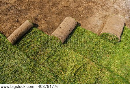 Few Roll Of Natural Grass Turfs Rolls Being Installed In The Residential Garden. Gardening And Lands