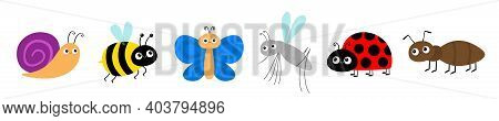 Ant, Mosquito, Butterfly, Snail Cochlea, Bee Bumblebee, Lady Bug Ladybird Insect Icon Set. Ladybug.
