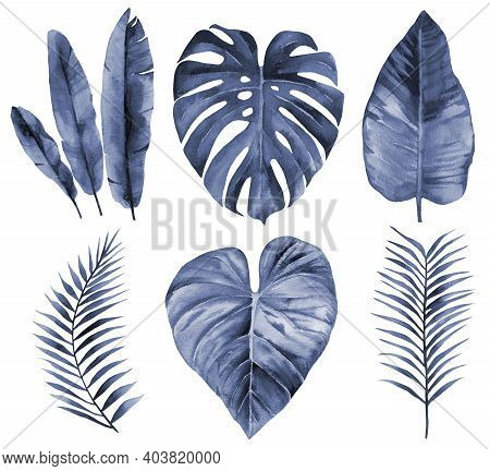 Blue Watercolour Leaf Set. Navy Blue Leaves. Watercolor Illustration Isolated On White Background.