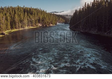 Looking Down Over Flowing Yellowstone River Lined With Pine Trees