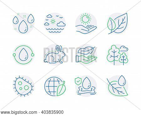 Nature Icons Set. Included Icon As Cold-pressed Oil, Bacteria, Flood Insurance Signs. Tree, Rainy We