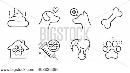 Pet Friendly, Dog Vaccination And Dog Bone Line Icons Set. Pet Shelter, Pets Care And Feces Signs. V
