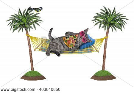 A Gray Cat In Sunglasses Is Lying In A Hammock Between Palm Trees And Eating A Slice Of Pizza. White