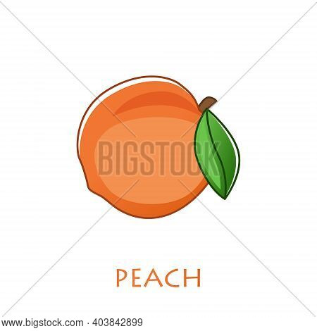 Peach Isolated Vector Icon. Peach Fruit On Branch With Leaf. Juice Or Jam Branding Logotype.