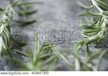 Close Up Of Rosemary Aromatic Herb Food Background