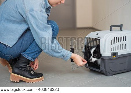 A Young European Woman Carries A Dog In A Safe Travel Cage. Papillon Dog Companion.