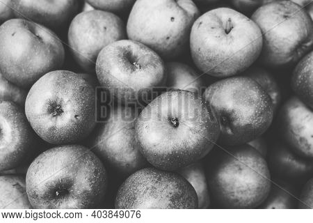 Vintage Black And White Shot Of A Pile Of Apples