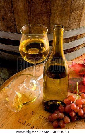 Vineyared Still Life
