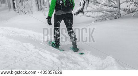 Snowshoe closeup of woman hiker snowshoeing in snow. Winter outdoor activity, winter sports.