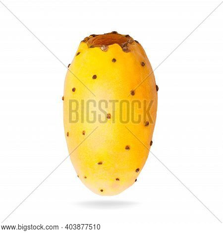 Isolated Opuntia Fruits With Shadow For Packaging And Advertisement. Full Depth Of Field. Clip Art I