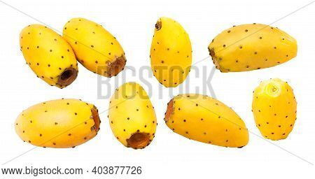 Collection Of Fruit. Different Shapes Of Fresh Whole Prickly Pears Cactus Isolated On White Backgrou