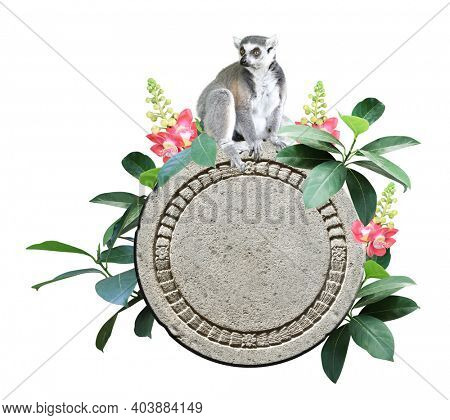 Ringtailed lemur, old stone, flower and leaves of tropical plant. Jungle stone sign with green leaf and  lemur catta. Isolated on white background. Mock up template. Copy space for text
