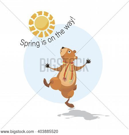 Happy Groundhog Day. Groundhog Awakened. Sunny Day. Spring Is On The Way. Marmot, Sun And Shadow. Ve