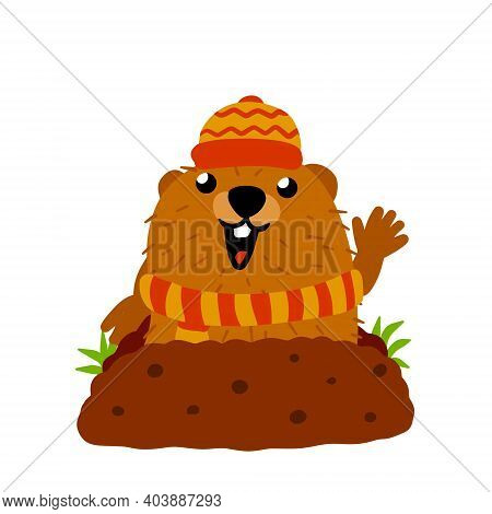 Groundhog Day. Cute Marmot In Red Winter Hat And Scarf. Cute Character Of February Holiday. Animals
