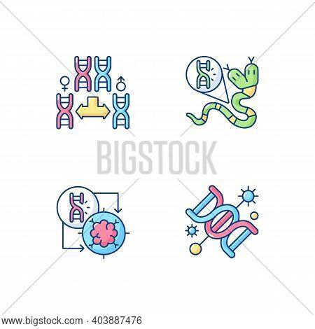Dna Manipulation Rgb Color Icons Set. Chromosome Division. Genetic Mutation. Gene Silencing. Life Re