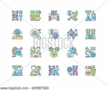 Genetic Engineering Rgb Color Icons Set. Chromosome Division. Animal Mutation. Medical, Industrial B