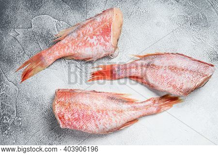 Raw Red Perch Or Seabass Fish. White Background. Top View