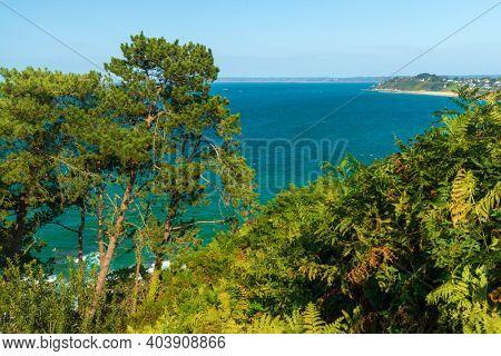 Beautiful Bretagne coastline covered with eagle fern with deep blue sea, near Locquirec, France.