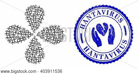 Genome Spiral Twirl Flower With Four Petals, And Blue Round Hantavirus Rough Stamp Imitation With Ic