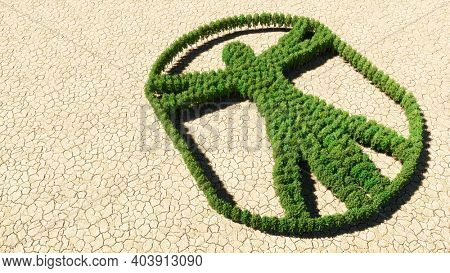 Concept or conceptual group of green forest tree on dry ground background, sign of  vitruvius man. A 3d illustration metaphor for architecture, renaissance, anthropology and physiology