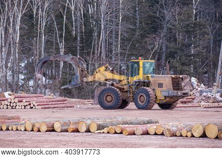 Open-air Timber Warehouse. A Loader Transports An Armful Of Felled Logs Through The Sawn Timber Yard