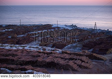 View From Above. Open-air Timber Warehouse. Many Felled Logs Are Stacked Neatly In A Large Pile In A