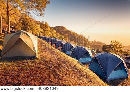 Tourist Camp Tent And Terrace Under Pine Trees Forest During Sunrise, Field Campground For Camping V