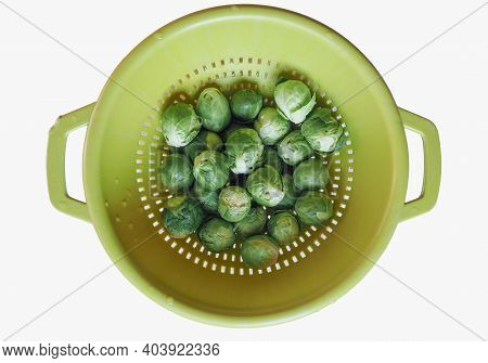 Brussels Sprouts Cabbage Vegetables Vegetarian Food (scientific Name Brassica Oleracea) Isolated Ove
