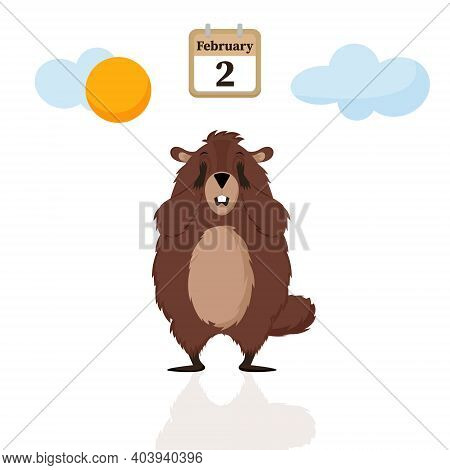 Happy Groundhog Day. Diagram With Illustrations Of Cute And Funny Groundhogs. Vector Illustration.
