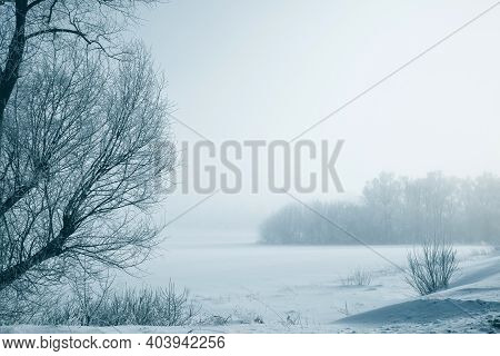 Winter, Frosty Landscape With White Trees In A Cold Fog. Frosty, Winter Landscape